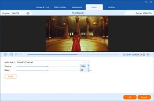 video-converter-ultimate-subtitle-audio-tracks (1)